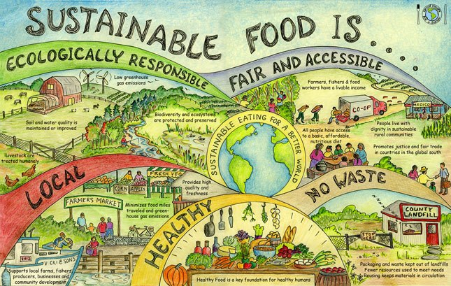 sustainable-food